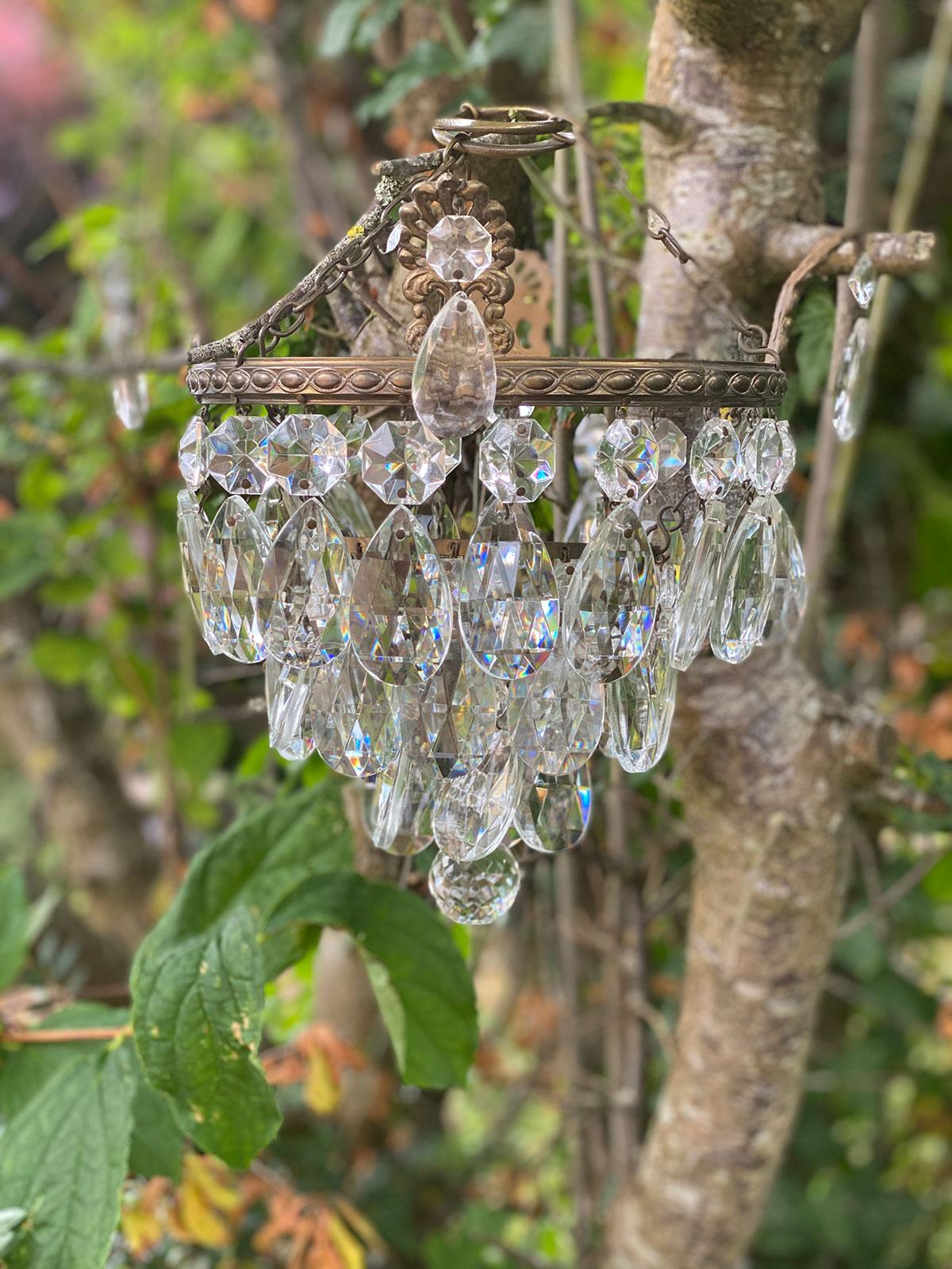 Crystal Pear Drop Chandelier